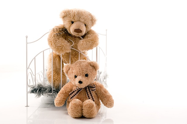 teddy-bear-1469128_640